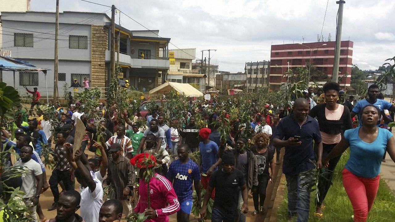 Cameroon probes separatist unrest in anglophone region