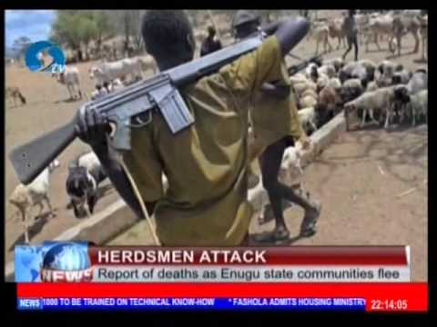 Herdsmen Contradict Nig. Govt. on New Year Attack in Benue