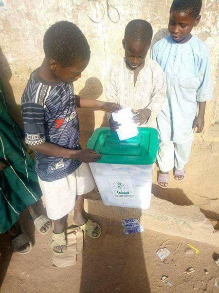 Photos of Underage voters related to Kano LG election, INEC affirms