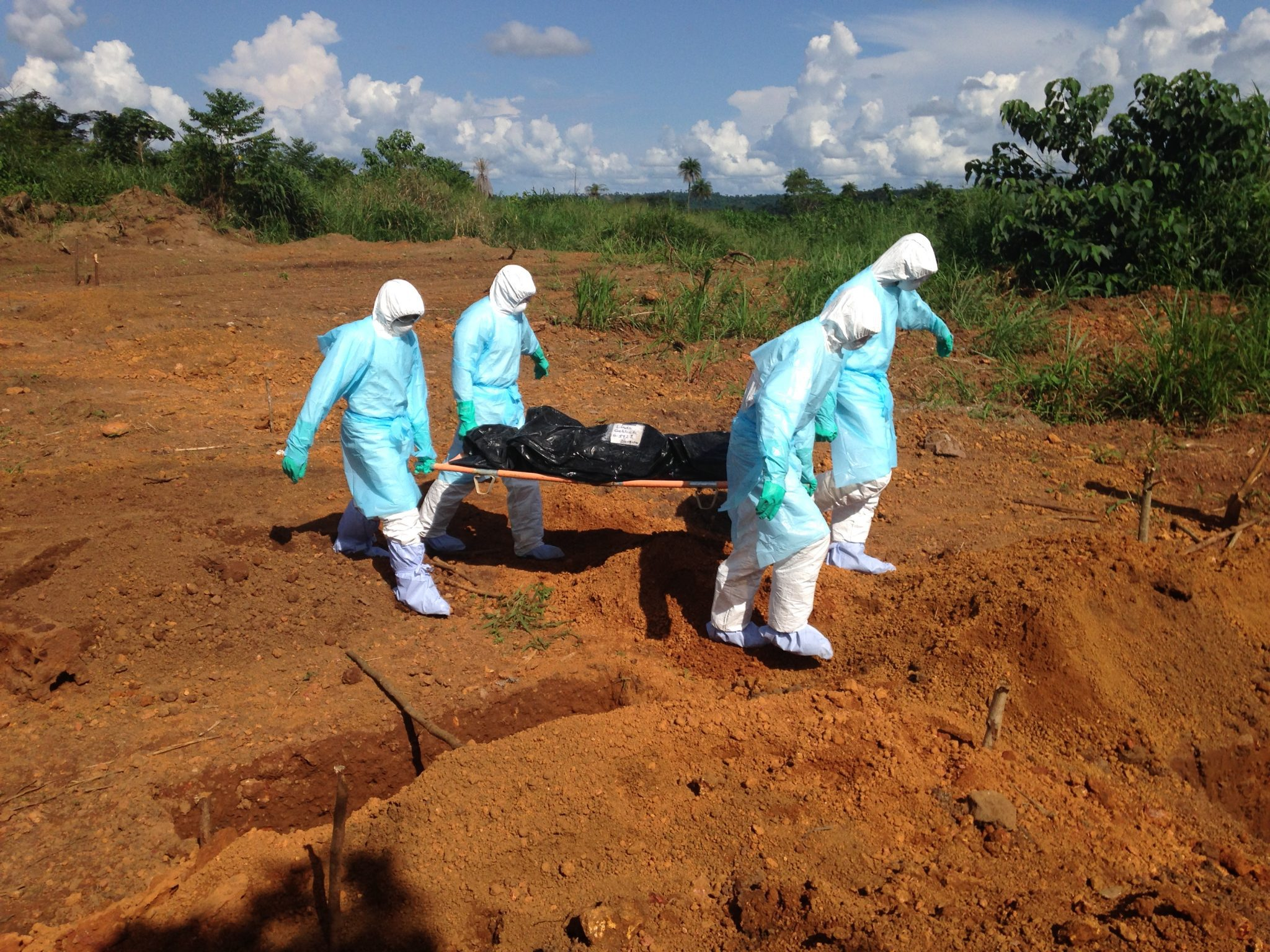 WHO assures preparedness to combat Ebola outbreak