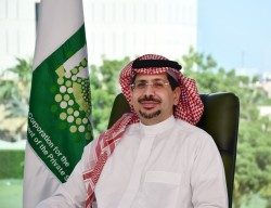 Ayman Sejiny is new Islamic Corporation for the Development MD/CEO