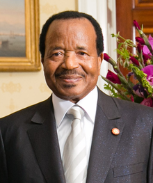 Oct. 7th election: Biya likely to return amidst 'Ambazonia' youths uprising