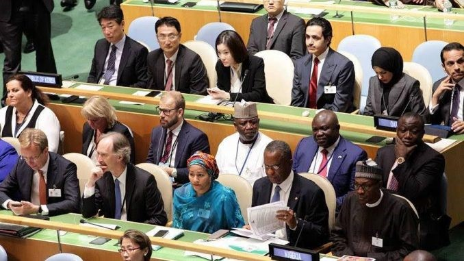Nigeria votes end to Israel, Palestine conflict by UN's 2-state solution
