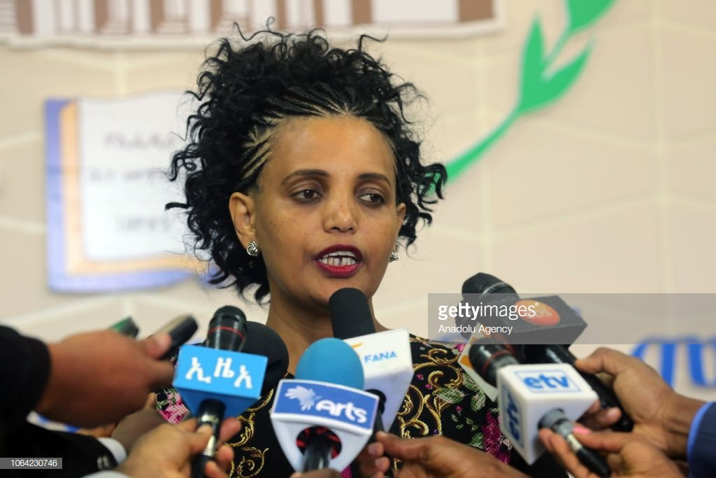 Ethiopia Trusts Opposition Chief, Mideska, to Head Electoral