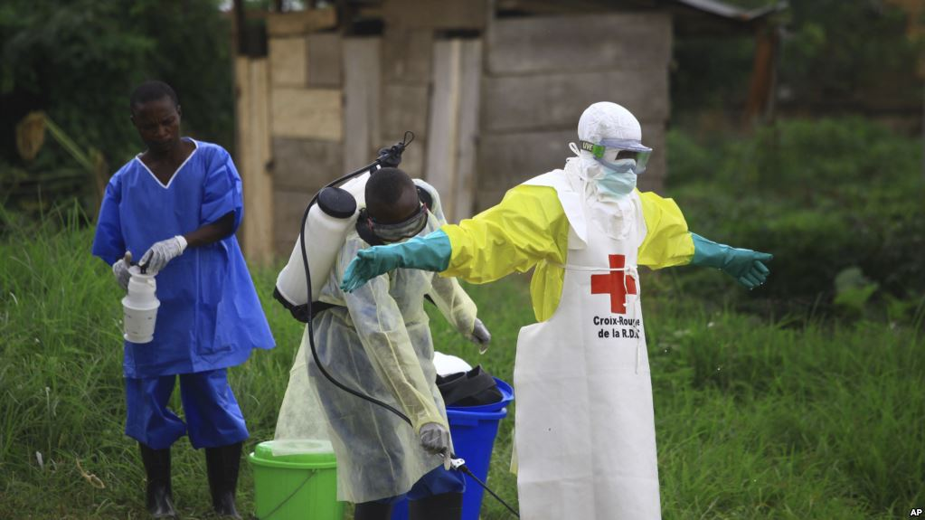 Congo Ebola now infecting newborns—WHO