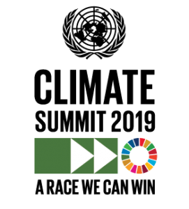 Nigeria, Congo, Namibia, others make pledges towards Climate Change