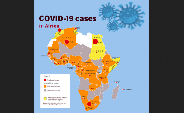 Mitigating COVID-19's impact on Africa's food systems, By Atsuko Toda and Martin Fregene