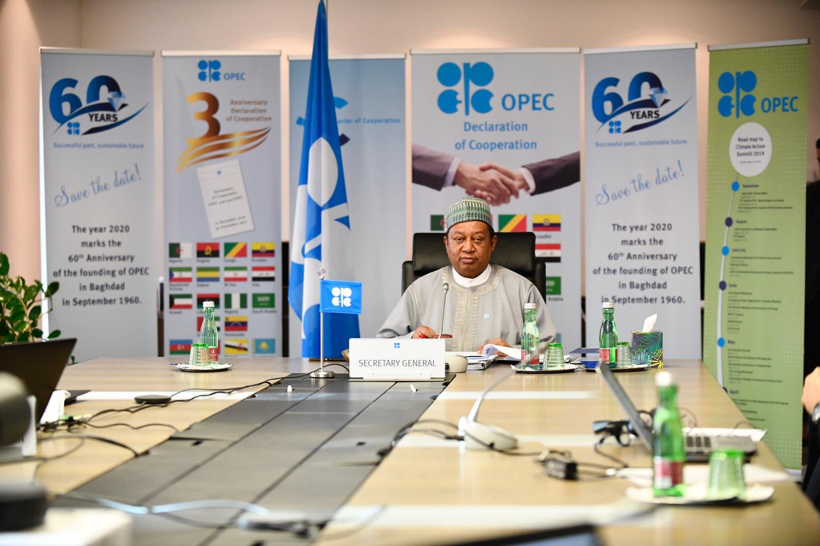 'Good news for Africa oil market' as OPEC+ slashes 20Mb daily production