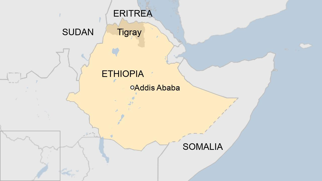 Ethiopia's Tigray crisis: US calls for Eritrea troops to withdraw