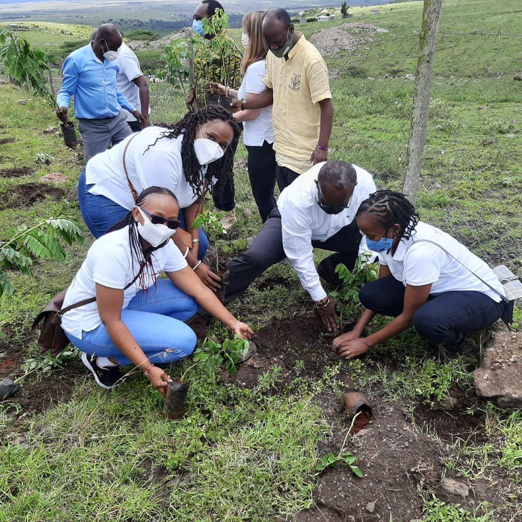 AstraZeneca, EverGreen Alliance Power Reforestation in Kajiado