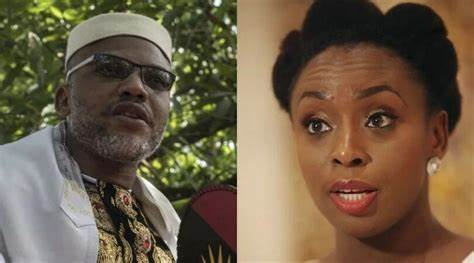I can't blame Nnamdi Kanu, His intentions are understandable —Adichie