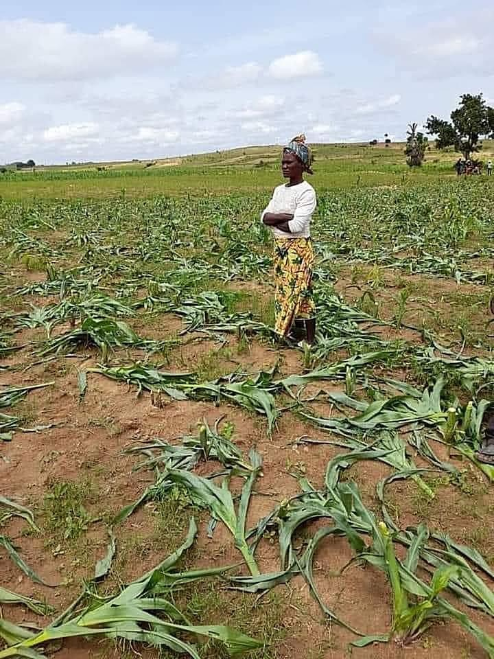 UN says 4.4 million Nigerians face acute hunger as insecurity persists